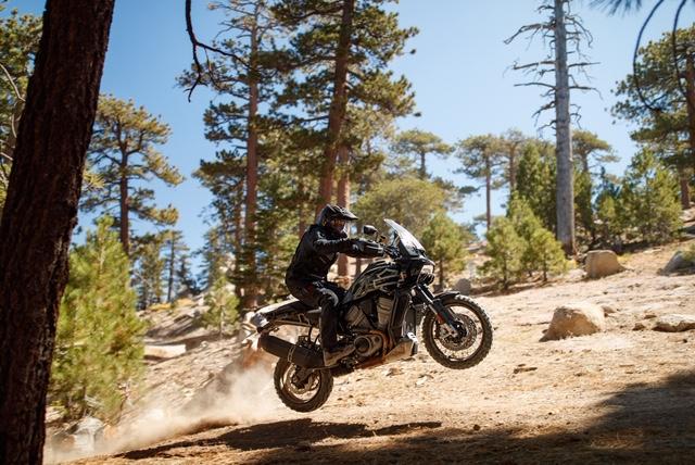Harley-Davidson Adventure és Streetfighter
